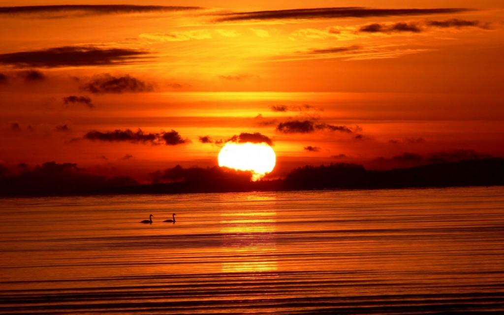 sunriseoverthesea